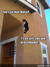 You call that Ninja? I can still see you, grasshopper.